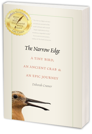 The Narrow Edge: A TINY BIRD, AN ANCIENT CRAB, AND AN EPIC JOURNEY Red Knot